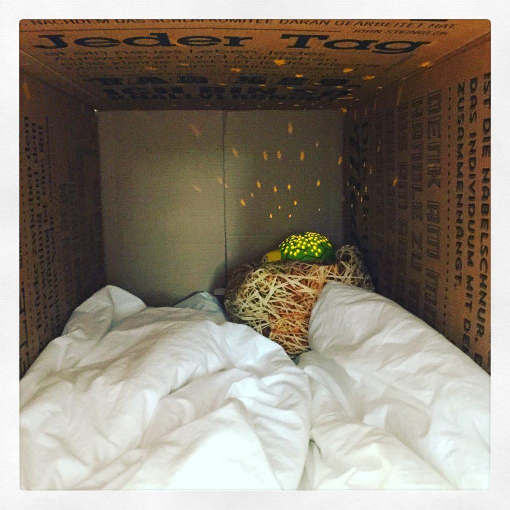 Die Bettdecke ist auch gut zum Höhlenbau geeignet
