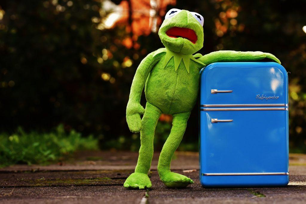 Links: ich, rechts: mein nicht smarter Kühlschrank